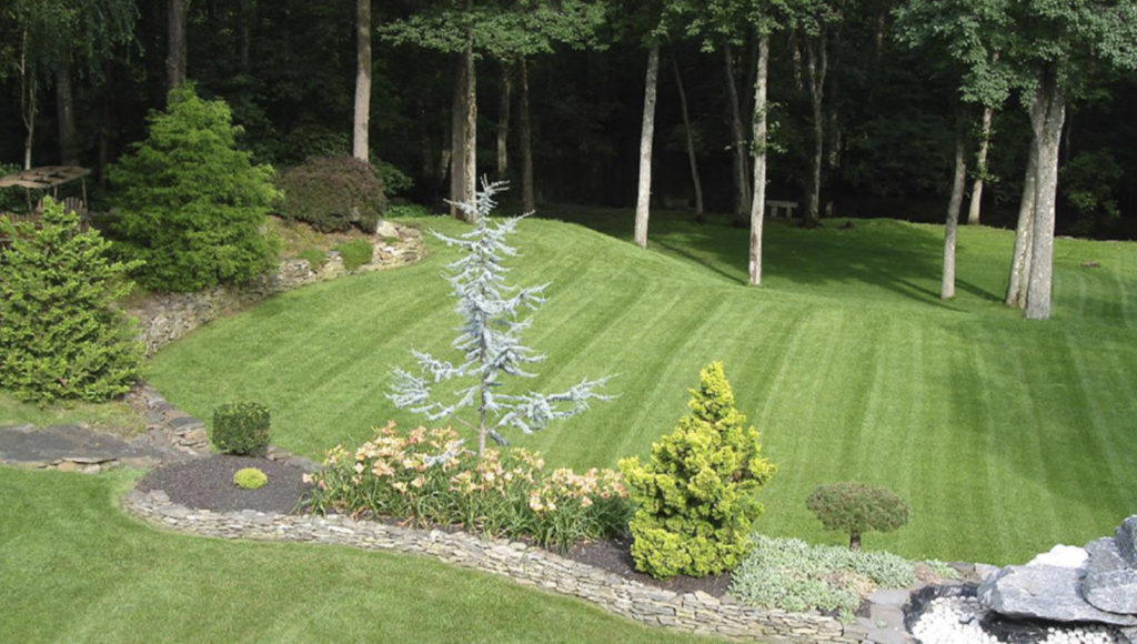 residential-lawn-services