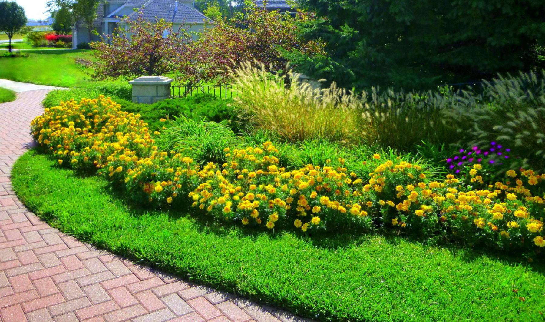 Residential Lawn Services 12