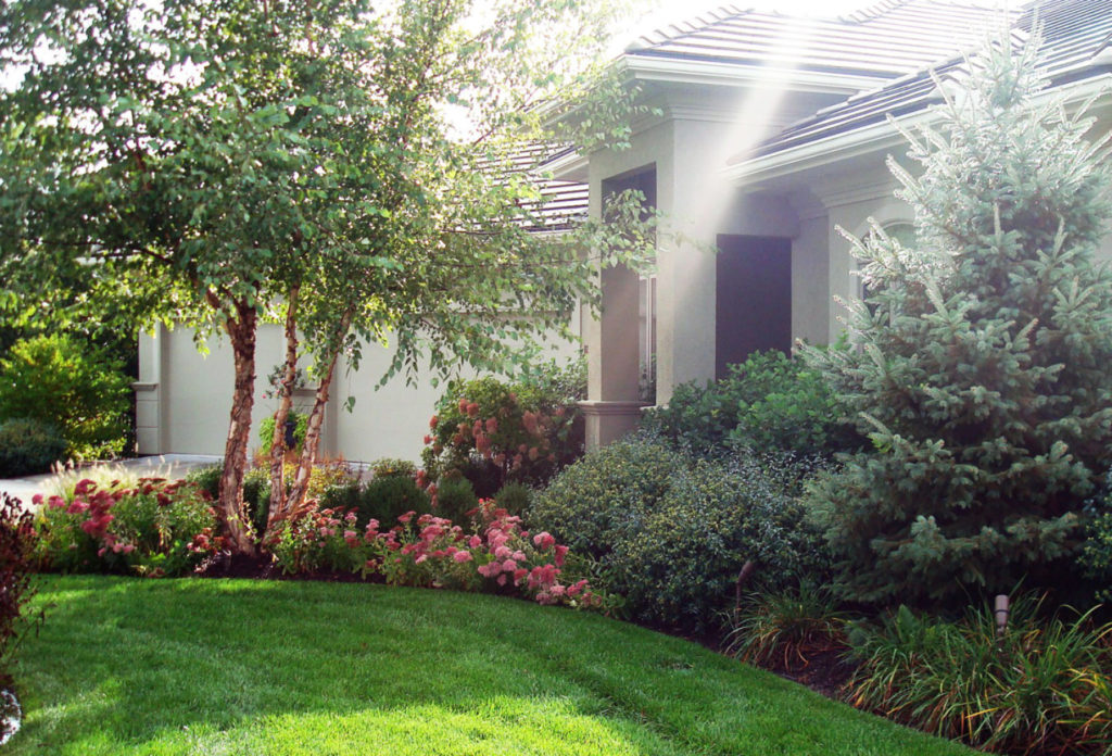 Residential Lawn Services 6-