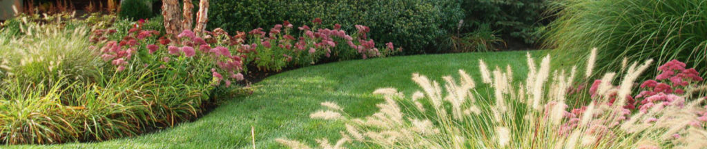 Residential Lawn Services about us Heritage Landscape