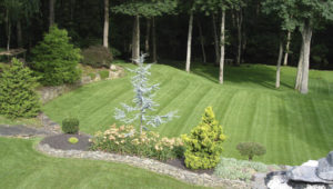 commercial lawn service for kansas city 2