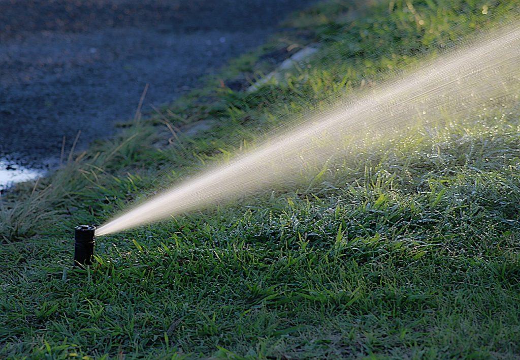 water, watering, garden